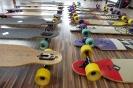 Longboards Eingetroffen